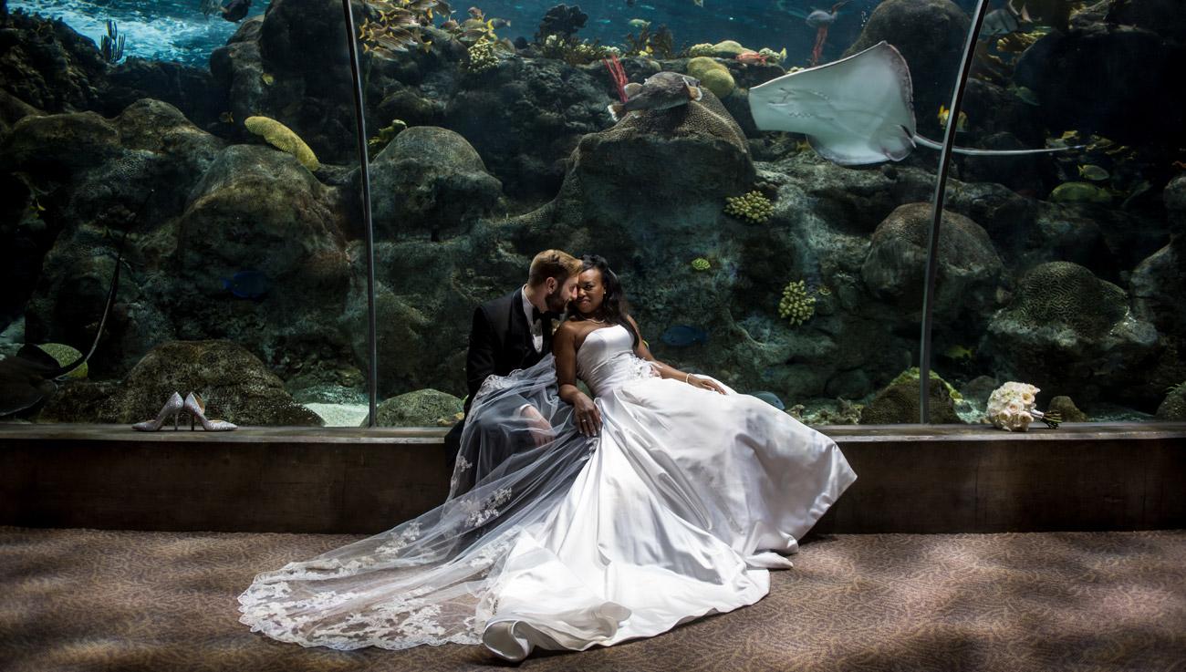 http://www.cricketsphoto.com/wp-content/uploads/2016/10/orlando-family-wedding-h2.jpg
